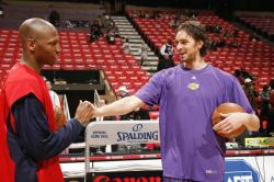 Pau Gasol shakes hand with Stromile Swift.jpg
