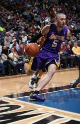 Steve Blake Photos and Pictures as a Laker